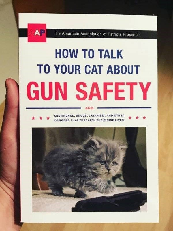 how to book - Cat - AP The American Association of Patriots Presents: HOW TO TALK TO YOUR CAT ABOUT GUN SAFETY AND ABSTINENCE, DRUGS, SATANISM, AND OTHER DANGERS THAT THREATEN THEIR NINE LIVES