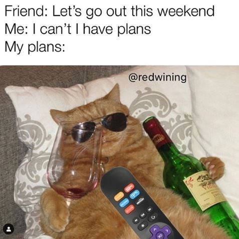 Meme - Product - Friend: Let's go out this weekend Me: I can't I have plans Мy plans: @redwining