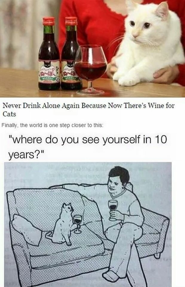 "Meme - Cartoon - Never Drink Alone Again Because Now There's Wine for Cats Finally, the world is one step closer to this: ""where do you see yourself in 10 years?"""
