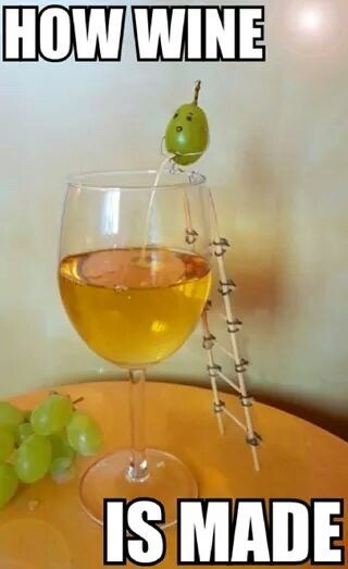 Meme - Drink - HOW WINE IS MADE