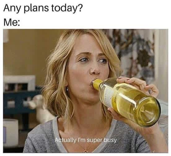 Meme - Drinking - Any plans today? Me: Actually I'm super busy