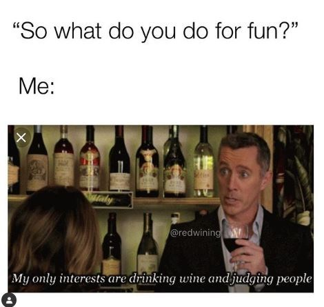 "Meme - Alcohol - ""So what do you do for fun?"" Me: @redwining My only interests are drinking wine andfudging people X"