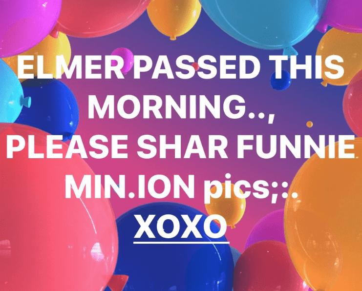 millennials - Balloon - ELMER PASSED THIS MORNING.. PLEASE SHAR FUNNIE MIN.ION pics;: ХОХО