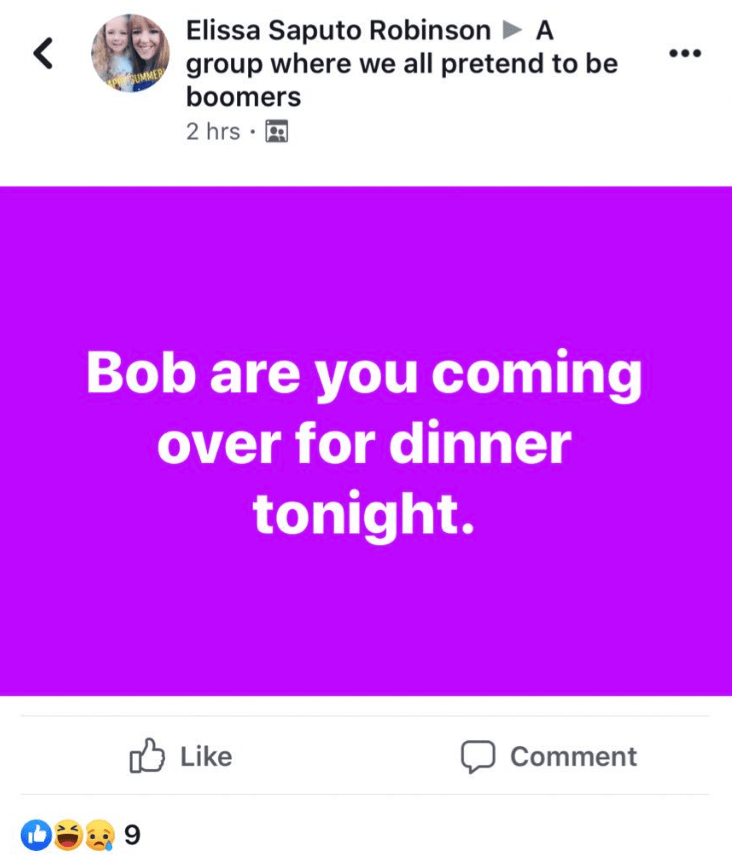 millennials - Text - Elissa Saputo Robinson A < group where we all pretend to be boomers 2 hrs Bob are you coming over for dinner tonight. Like Comment