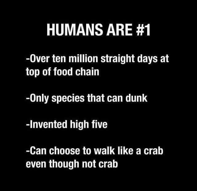 Meme - Text - HUMANS ARE #1 -Over ten million straight days at top of food chain Only species that can dunk -Invented high five -Can choose to walk like a crab even though not crab