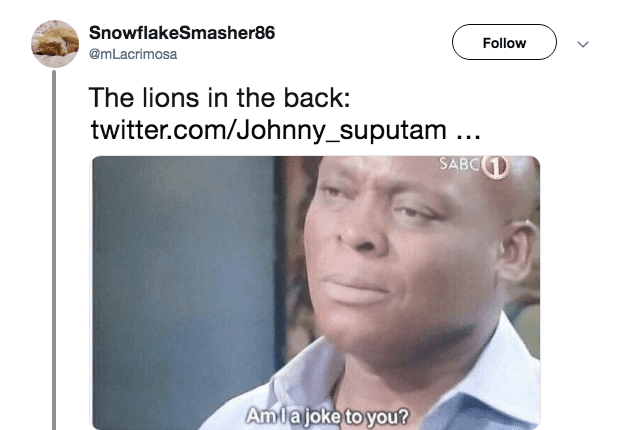 Face - SnowflakeSmasher86 Follow @mLacrimosa The lions in the back: twitter.com/Johnny_suputam.. SABC1 Amlajoke to you?