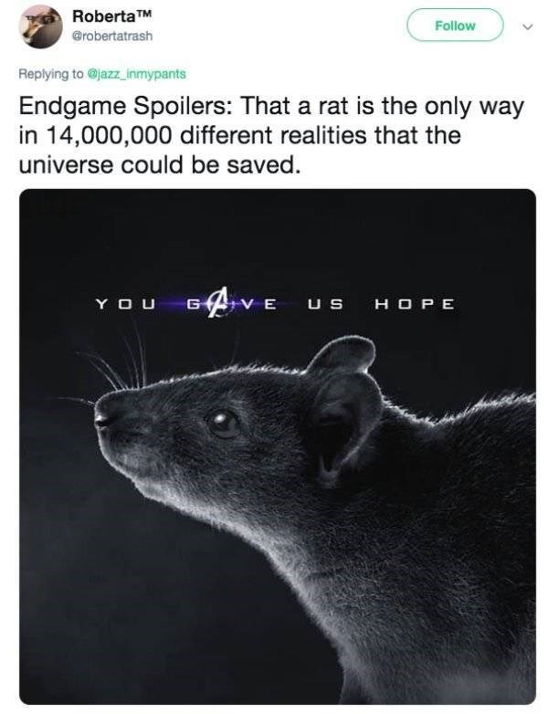 Rat - RobertaTM Follow @robertatrash Replying to@jazz_inmypants Endgame Spoilers: That a rat is the only way in 14,000,000 different realities that the universe could be saved VE Us YOU G HOPE