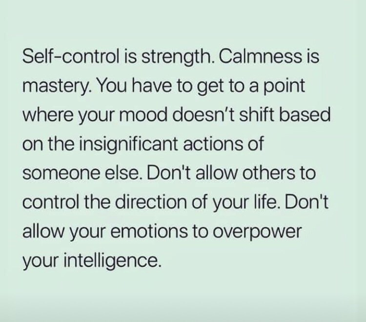 dark meme - Text - Self-control is strength. Calmness is mastery. You have to get to a point where your mood doesn't shift based on the insignificant actions of someone else. Don't allow others to control the direction of your life. Don't allow your emotions to overpower your intelligence.