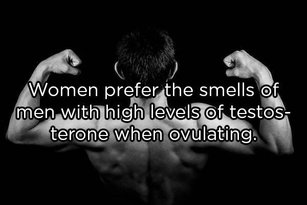 Text - Women prefer the smells of men with high levels of testos- terone when ovulating