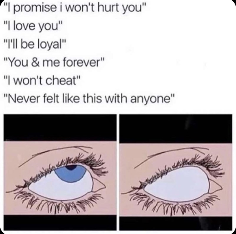 """Meme - Eyebrow - I promise i won't hurt you"""" """"I love you"""" """"""""Il be loyal"""" """"You & me forever"""" """"I won't cheat"""" """"Never felt like this with anyone"""""""