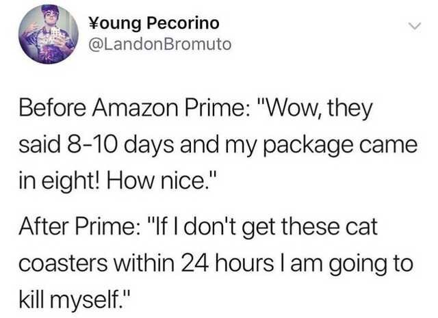 "Meme - Text - ¥oung Pecorino @LandonBromuto Before Amazon Prime: ""Wow, they said 8-10 days and my package ca in eight! How nice."" After Prime: ""If I don't get these cat coasters within 24 hours I am going to kill myself."""