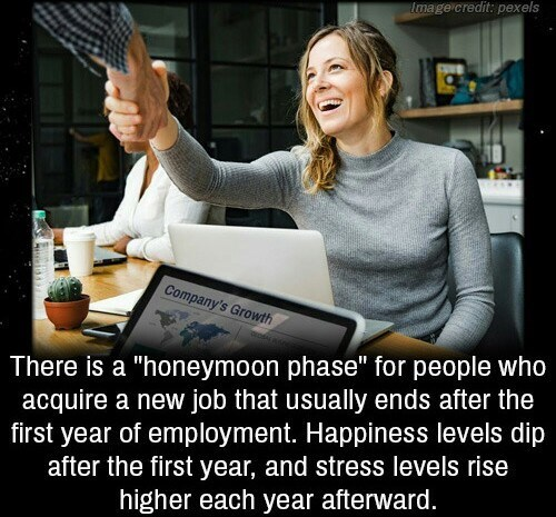 "Meme - Job - tmage credit: pexels Company's Growth There is a ""honeymoon phase"" for people who acquire a new job that usually ends after the first year of employment. Happiness levels dip after the first year, and stress levels rise higher each year afterward."