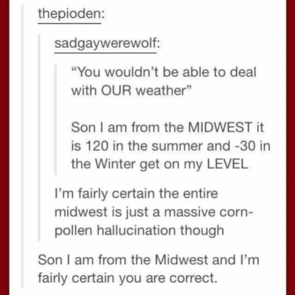 """Meme - Text - thepioden: sadgaywerewolf: """"You wouldn't be able to deal with OUR weather"""" Son I am from the MIDWEST it is 120 in the summer and -30 in the Winter get on my LEVEL I'm fairly certain the entire midwest is just a massive corn- pollen hallucination though Son I am from the Midwest and I'm fairly certain you are correct."""
