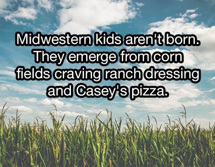 Meme - Natural landscape - Midwestern kids aren't born. They emerge from corn fields craving ranch dressing and Casey's pizza