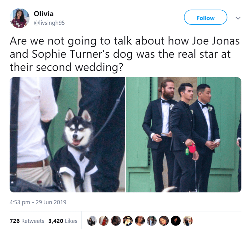 dog at a wedding - Suit - Olivia Follow @livsingh95 Are we not going to talk about how Joe Jonas and Sophie Turner's dog was the real star at their second wedding? 4:53 pm 29 Jun 2019 726 Retweets 3,420 Likes