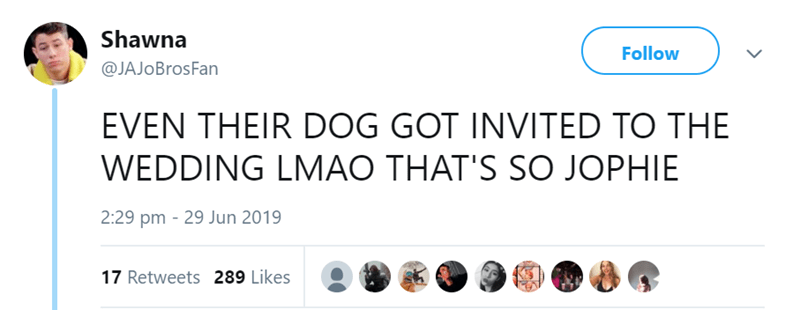 dog at a wedding - Product - Shawna Follow @JAJO BrosFan EVEN THEIR DOG GOT INVITED TO THE WEDDING LMAO THAT'S SO JOPHIE 2:29 pm 29 Jun 2019 17 Retweets 289 Likes