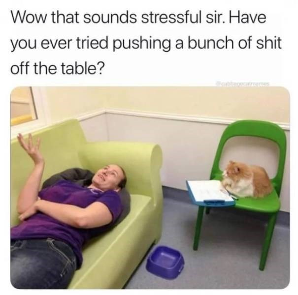 cat job - Product - Wow that sounds stressful sir. Have you ever tried pushing a bunch of shit off the table? cabbngecatmm