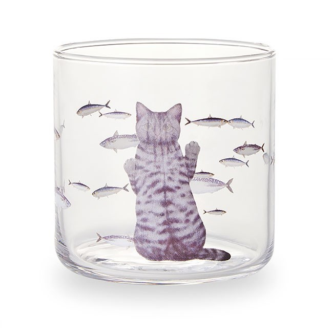 Glass with cat looking at fish