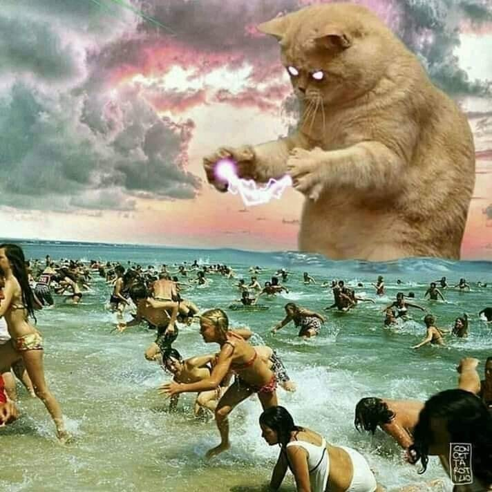 funny cat photoshop of a CATZILLA godzilla-cat emerging from the water at the beach as people run in fear