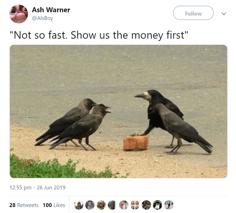 """funny animal tweets - - Crow - Ash Warner Follow @AlsBoy """"Not so fast. Show us the money first"""" 12:55 pm 26 Jun 2019 28 Retweets 100 Likes"""