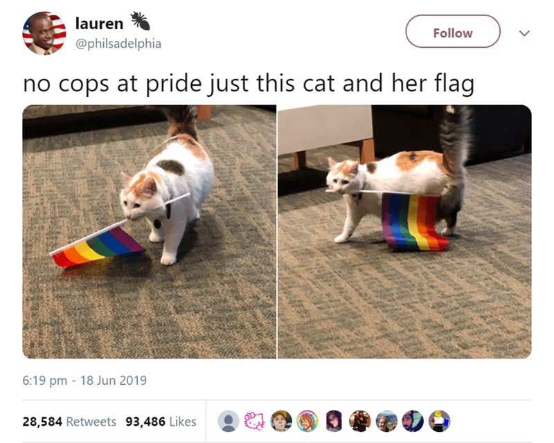 funny animal tweets - - Screenshot - lauren Follow @philsadelphia no cops at pride just this cat and her flaq 6:19 pm 18 Jun 2019 28,584 Retweets 93,486 Likes
