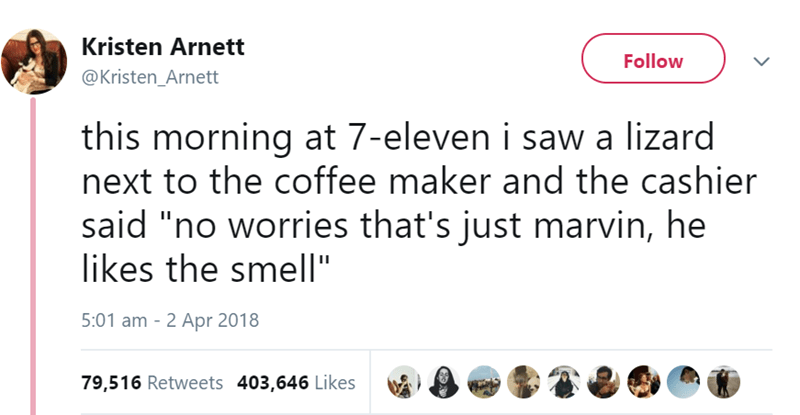 "Text - Kristen Arnett Follow @Kristen_Arnett this morning at 7-eleven i saw a lizard next to the coffee maker and the cashier said ""no worries that's just marvin, he likes the smell"" 5:01 am 2 Apr 2018 79,516 Retweets 403,646 Likes"