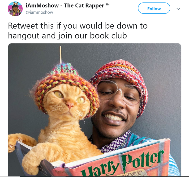 Photography - iAmMoshow - The Cat Rapper TM @iammoshow Follow Retweet this if you would be down to hangout and join our book club ar Polter er