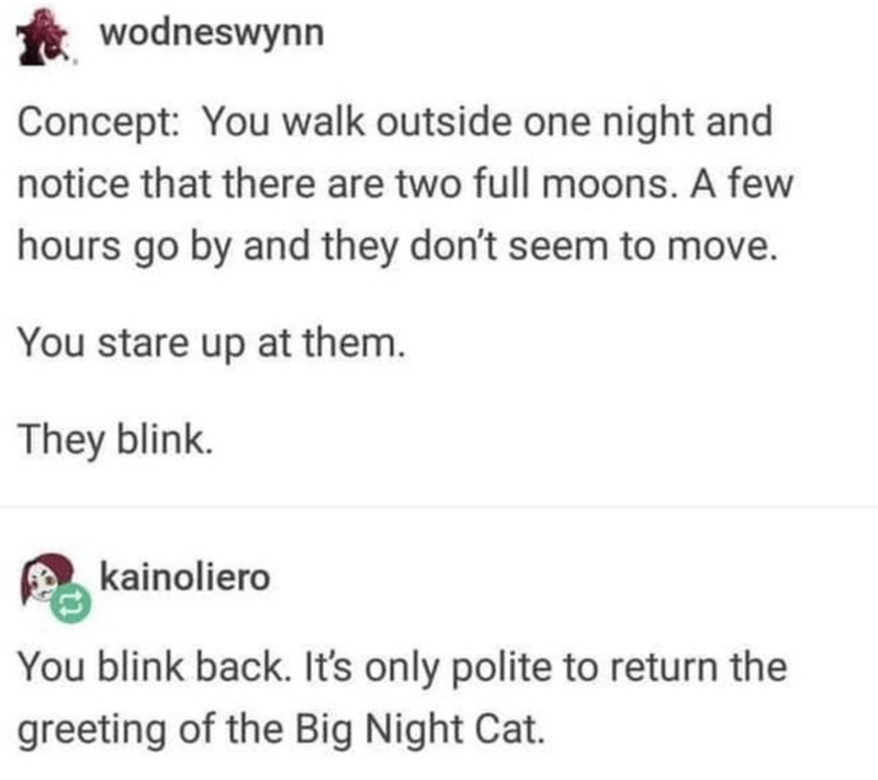 Text - wodneswynn Concept: You walk outside one night and notice that there are two full moons. A few hours go by and they don't seem to move. You stare up at them. They blink. kainoliero You blink back. It's only polite to return the greeting of the Big Night Cat.