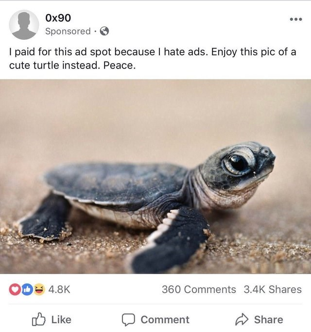 Sea turtle - Ox90 Sponsored I paid for this ad spot because I hate ads. Enjoy this pic of a cute turtle instead. Peace OD 4.8K 360 Comments 3.4K Shares Like Comment Share