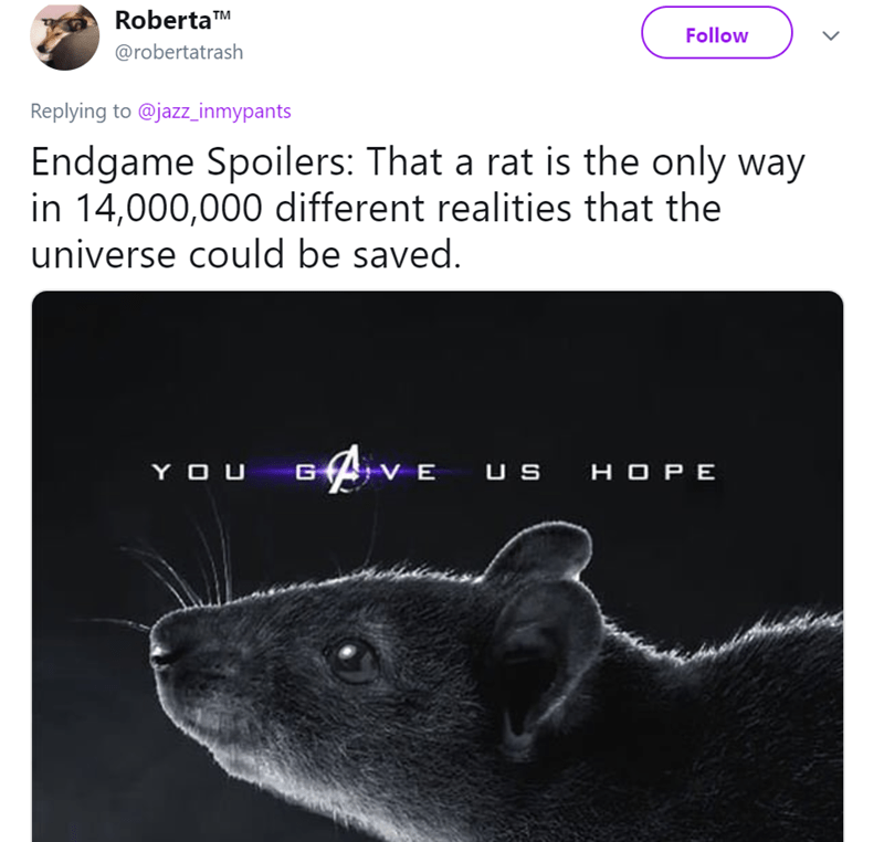Rat - RobertaTM Follow @robertatrash Replying to @jazz_inmypants Endgame Spoilers: That a rat is the only way in 14,000,000 different realities that the universe could be saved. VE US HOPE G YOU