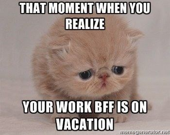 vacation meme - Cat - THAT MOMENT WHEN YOU REALIZE YOUR WORK BFF IS ON VACATION memagunurator.net