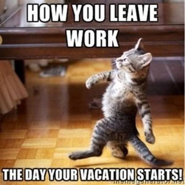 vacation meme - Cat - HOW YOU LEAVE WORK THE DAY YOUR VACATION STARTS! SHendgeherTS