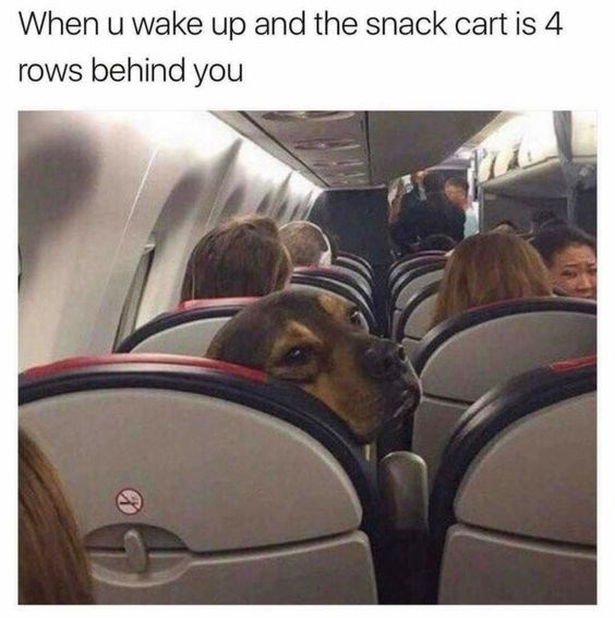 vacation meme - Transport - When u wake up and the snack cart is 4 rows behind you