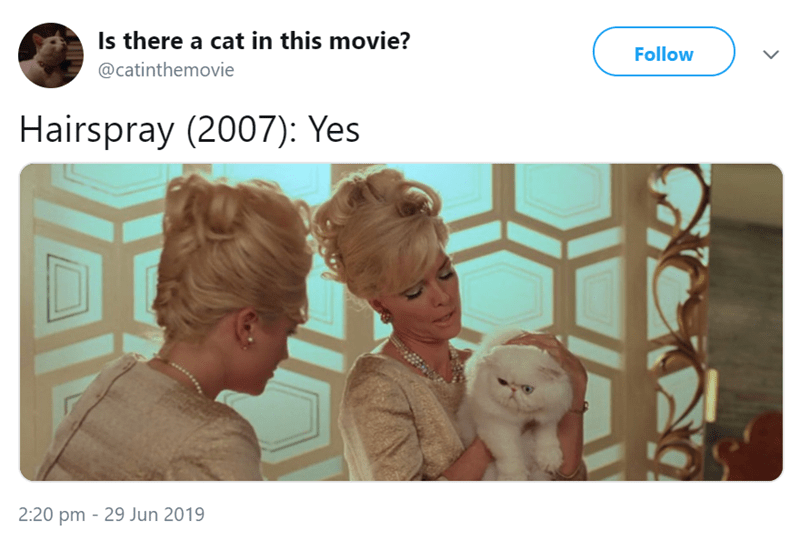 Text - Is there a cat in this movie? Follow @catinthemovie Hairspray (2007): Yes 2:20 pm 29 Jun 2019