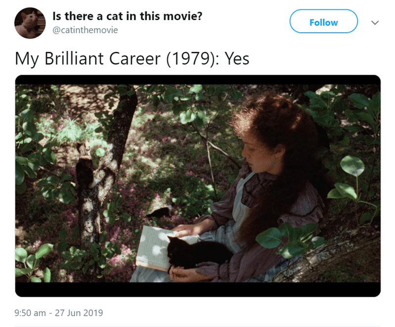 Text - Is there a cat in this movie? Follow @catinthemovie My Brilliant Career (1979): Yes 9:50 am 27 Jun 2019