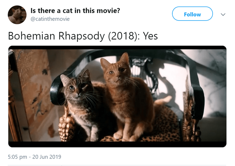 Cat - Is there a cat in this movie? Follow @catinthemovie Bohemian Rhapsody (2018): Yes 5:05 pm 20 Jun 2019 -