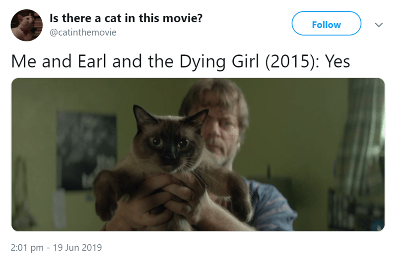 Cat - Is there a cat in this movie? Follow @catinthemovie Me and Earl and the Dying Girl (2015): Yes 2:01 pm 19 Jun 2019