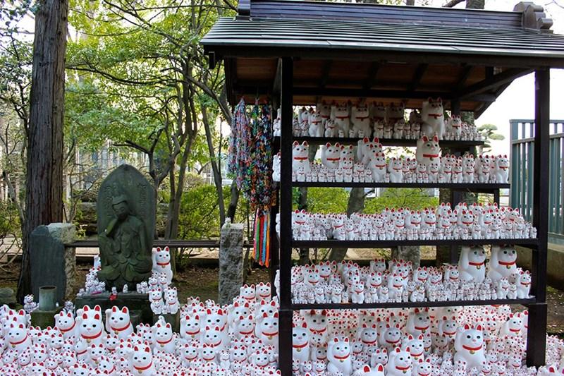 cat house - Shrine - :