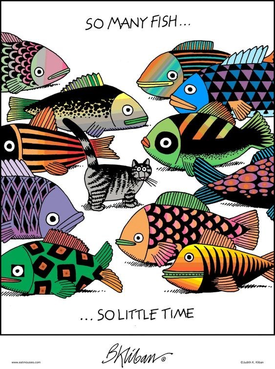 Organism - SO MANY FISH... ... SOLITTLE TIME Bkibuns Cdth K ohan www.eatmouses.com