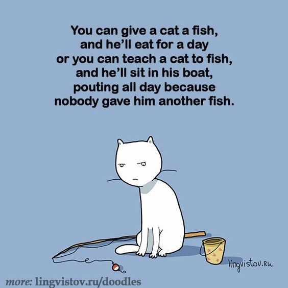 Text - You can give a cat a fish, and he'll eat for a day or you can teach a cat to fish, and he'll sit in his boat, pouting all day because nobody gave him another fish. 3 tinovistov.u more: lingvistov.ru/doodles