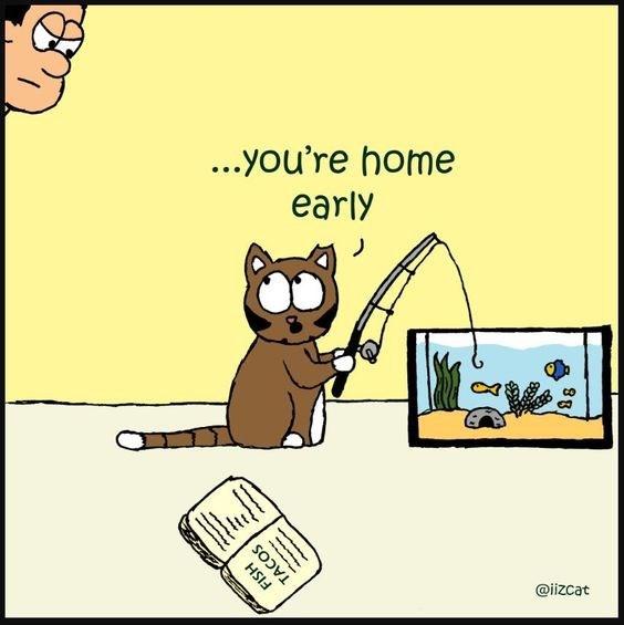 Cartoon - ...you're home early @iizcat FISH TACOS 89