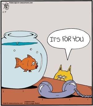Cartoon - bcaron.com ITS FOR YOU ereaes.com 62014 Leigh s