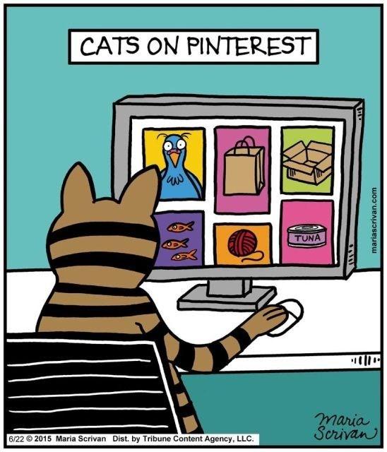 Cartoon - CATS ON PINTEREST| TUNA maria Serivan 6/22 2015 Maria Scrivan Dist. by Tribune Content Agency, LLC. wwwwwacaseueu