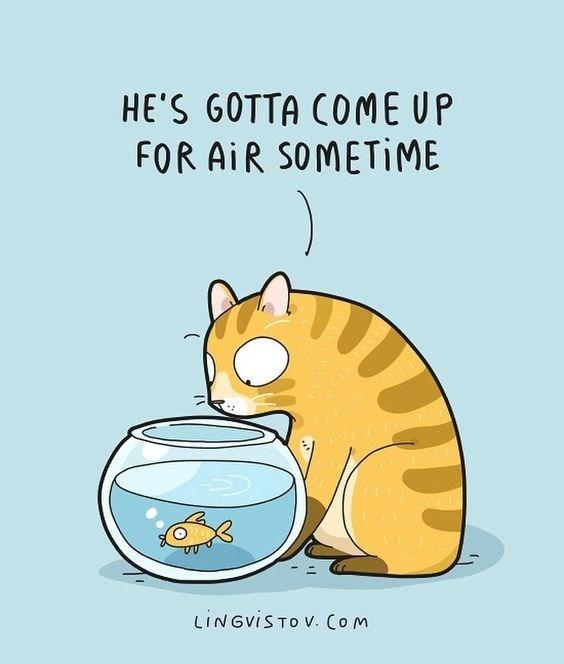 Cartoon - HE'S GOTTA COME UP FOR AiR SOMETIME LINGVISTO V. Com