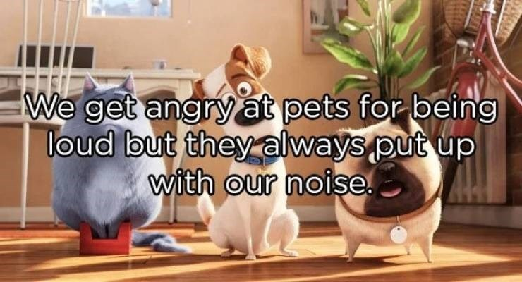 Photo caption - We get angryat pets for being loud but theyalways put up with our noise