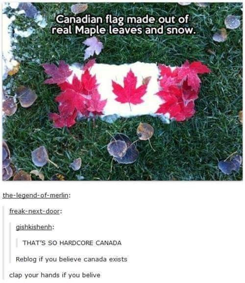 Meme - Canadian flag made out of real Maple leaves and snow. the-legend-of-merlin: freak-next-door: gishkishenh: THAT'S SO HARDCORE CANADA Reblog if you believe canada exists clap your hands if you belive