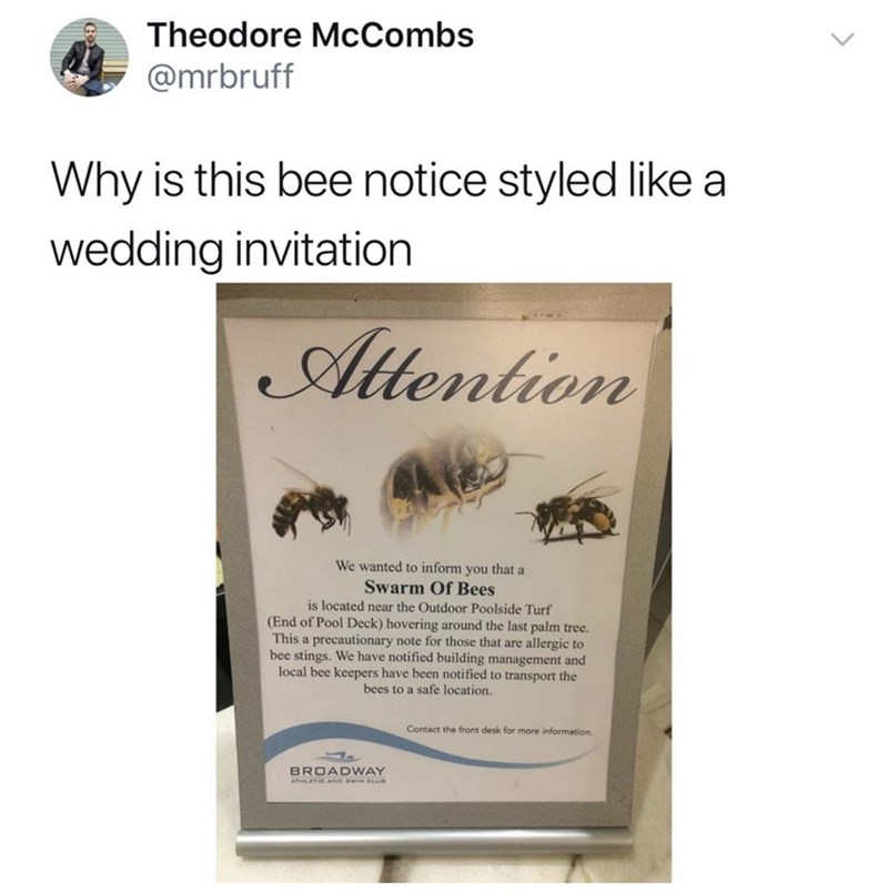 meme - Text - Theodore McCombs @mrbruff Why is this bee notice styled like a wedding invitation Atention We wanted to inform you that a Swarm Of Bees is located near the Outdoor Poolside Turf (End of Pool Deck) hovering around the last palm tree. This a precautionary note for those that are allergic to bee stings. We have notified building management and local bee keepers have been notified to transport the bees to a safe location. Contact the front desk for more information. BROADWAY ATHLETIC A