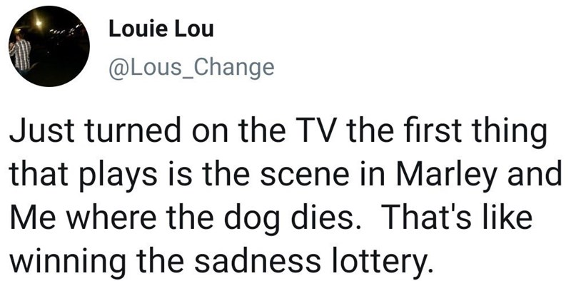 meme - Text - Louie Lou @LOus_Change Just turned on the TV the first thing that plays is the scene in Marley and Me where the dog dies. That's like winning the sadness lottery.