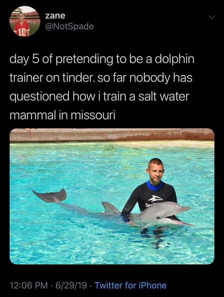 meme - Dolphin - zane @NotSpade 101 day 5 of pretending to be a dolphin trainer on tinder. so far nobody has questioned howi train a salt water mammal in missouri Se 12:06 PM 6/29/19 Twitter for iPhone
