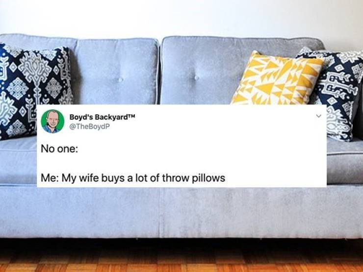 tweet - Furniture - Boyd's BackyardTM @TheBoydP No one: Me: My wife buys a lot of throw pillows